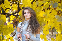 Beautiful girl in autumn park Royalty Free Stock Photo