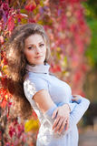 Beautiful girl in autumn park Stock Photography