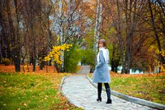 A beautiful girl on the autumn park Stock Photography