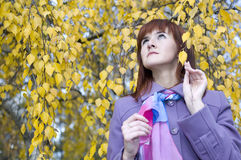 Beautiful girl in autumn. Pretty girl admiring the beauty of autumn Royalty Free Stock Image