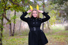 The beautiful girl in autumn wood Stock Photos