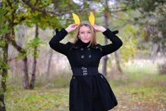 The beautiful girl in autumn wood Stock Photos