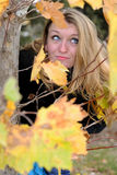 The beautiful girl in autumn wood Stock Photography