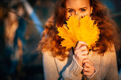 Beautiful girl on a background autumn forest Royalty Free Stock Photo