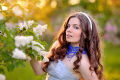 Beautiful girl on a background of white flowering trees Royalty Free Stock Photo