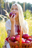 Beautiful girl with a basket of apples. Girl biting an apple outdoors Stock Image