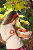 Beautiful girl with basket of ripe apples Stock Image