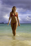 Beautiful girl at the beach. In hawaii Stock Images