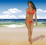 Beautiful girl in bikini on a beach. Vector illustration of beautiful girl in bikini on a beach Royalty Free Stock Photos