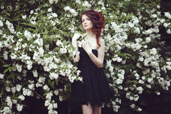 A beautiful girl in a black dress poses near a bush with white flowers. Royalty Free Stock Photography