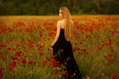 Girl with a bouquet of poppies in black dress stock photos