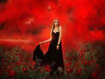 Girl with a bouquet of poppies in black dress stock photography