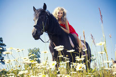 Beauty on horse Stock Photo