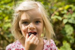 Beautiful Girl with Blackberry in the Garden. Stock Images