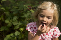 Beautiful Girl with Blackberry in the Garden. Royalty Free Stock Photos