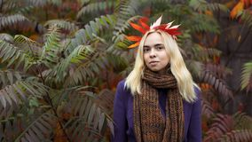 Half length portrait of young female in the autumn park royalty free stock photography