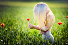 Beautiful girl on blooming poppy field Stock Image