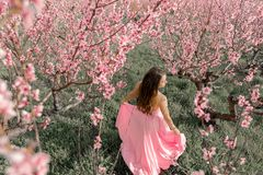 Beautiful girl in a blooming spring garden. She`s wearing a wedding dress.  royalty free stock images