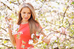 Beautiful girl in blooming tree in spring Royalty Free Stock Photography