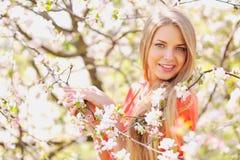 Beautiful girl in blooming tree in spring Royalty Free Stock Image