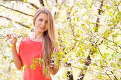 Beautiful girl in blooming tree in spring Stock Image