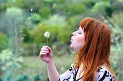 Beautiful girl  blowing on dandelion Stock Photos