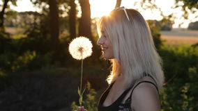Beautiful Girl blowing dandelion on the meadow at sunset. Girl blowing dandelion on the meadow stock video footage