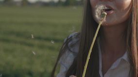 Beautiful girl blowing dandelion. Slow Mo stock video