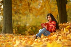 Beautiful girl with book Stock Photos