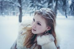 Beautiful girl in a bright fur coat with flowing hair and snow on her hair against the background of the winter forest royalty free stock photo