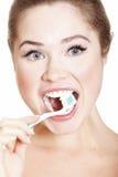 Beautiful Girl Brushing her Teeth Royalty Free Stock Image