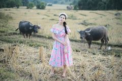 Beautiful girl with buffalo royalty free stock photography