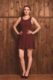 Beautiful girl in a burgundy dress. Beautiful girl beautiful girl in a burgundy dress on a background of a wooden wall Royalty Free Stock Photo