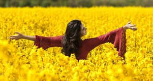 Beautiful girl in canola field Stock Photo