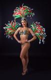 Beautiful girl in carnival costume. Stock Photos