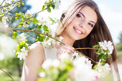Beautiful girl in a cherry blossom garden Stock Photography