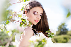 Beautiful girl in a cherry blossom garden Stock Images
