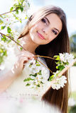 Beautiful girl in a cherry blossom garden Stock Photos