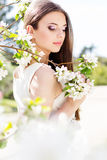 Beautiful girl in a cherry blossom garden Stock Image
