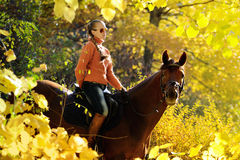 Beautiful girl with chestnut horse in autumn forest Stock Image