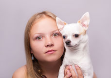 Beautiful girl with chihuahua Stock Photo