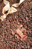 Beautiful girl with chocolate on cocoa beans Stock Image