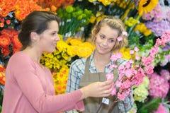 Beautiful girl choosing flowers in flower shop Stock Image