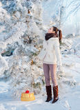 Beautiful girl with christmas gift  outdoor Royalty Free Stock Images