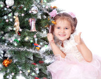 Beautiful girl with a Christmas tree Royalty Free Stock Photography