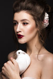 Beautiful girl with classic make-up, wedding hairstyle, bright lips and a dove in her hands. beauty face. Royalty Free Stock Photography