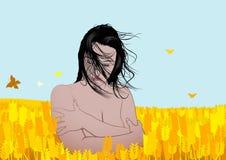 Beautiful girl in corn field. Romantic coloured vector illustration Stock Image