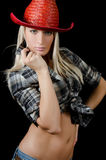 The beautiful girl in a cowboy's hat Stock Images