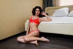 Beautiful girl with curly dark hair in lingerie Royalty Free Stock Photo