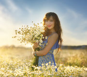 Beautiful girl in daisy field. Summer sunset Stock Image